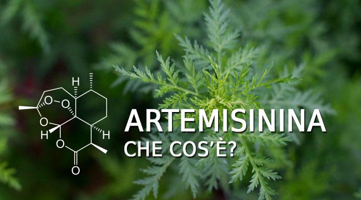 Che cos'è l'Artemisinina?