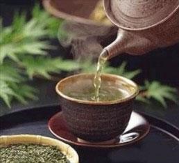 where to-buy herbal tea artemisia