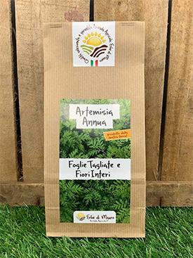 té de hierbas artemisia annua